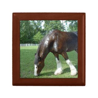 Clydesdale, pastando la caja de regalo del caballo joyero cuadrado pequeño