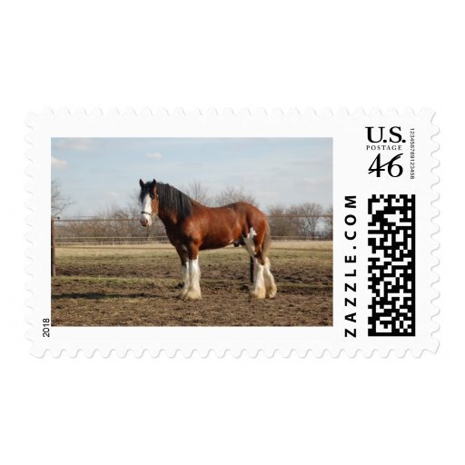 clydesdale stamp