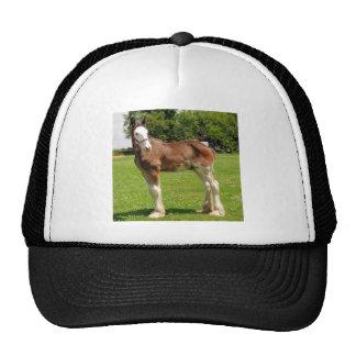 clydesdale stud trucker hat