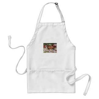 Clydesdales Rule Horse Art Adult Apron