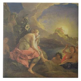 Clytie transformó en un girasol, 1688 (aceite ence azulejo cuadrado grande