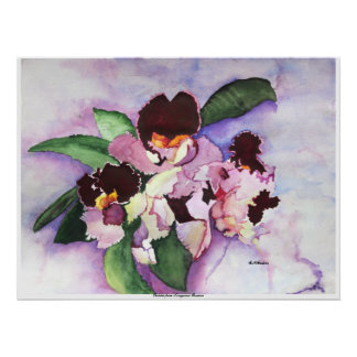 CMCarlson Orchids from Longwood Gardens Poster