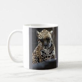 C'mere.  I dare ya. Coffee Mugs