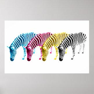 CMYK Drinking zebras Poster