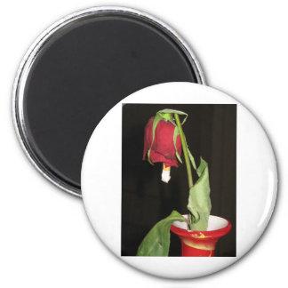 co2 junkie 2 inch round magnet