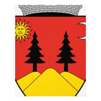 Coa_Romania_Town_Falticsén Letterhead