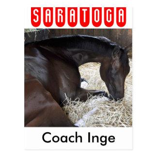Coach Inge - Brooklyn Handicap Winner Postcard