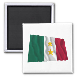 Coahuila y Tejas Flag Magnets