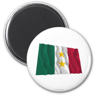 Coahuila y Tejas Flag Magnets