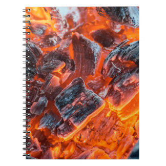 Coals and Embers from a Fire Notebook