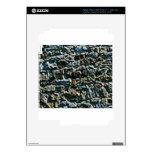 coarse stone wall iPad 3 skins