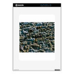 coarse stone wall skins for iPad
