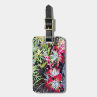 Coast Dudleya At Point Reyes National Seashore Luggage Tag