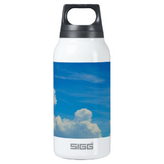 Coast Insulated Water Bottle