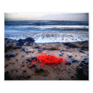 Coast Line Art Photo