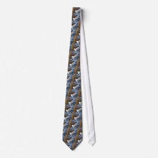Coast Ocean Tie