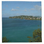 Coast of St. Lucia Caribbean Vacation Photo Cloth Napkin