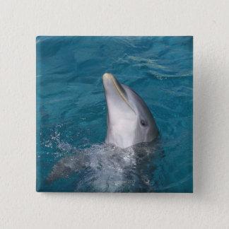 Coastal Bottlenose Dolphin Pinback Button