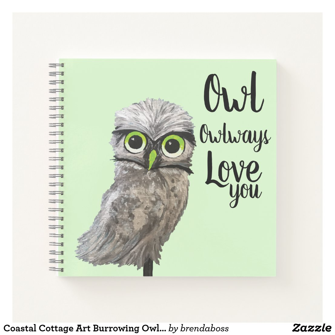 Coastal Cottage Art Burrowing Owl Painting