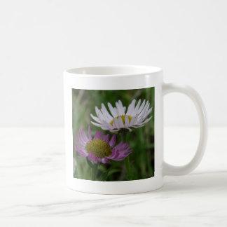 Coastal Fleabane Aster, Erigeron peregrinus Coffee Mug