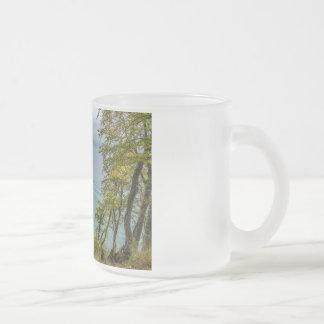 Coastal forest on the Baltic Sea coast Frosted Glass Coffee Mug