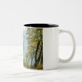 Coastal forest on the Baltic Sea coast Two-Tone Coffee Mug