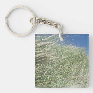Coastal Grasses, Ocean View Keychain