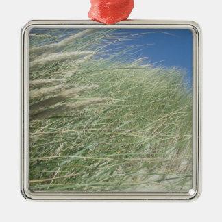 Coastal Grasses, Ocean View Ornament