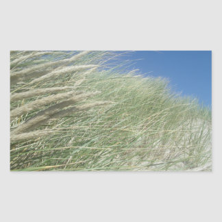 Coastal Grasses, Ocean View Rectangular Sticker