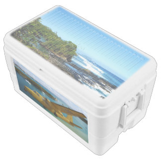 Coastal landscape and old airplane ice chest