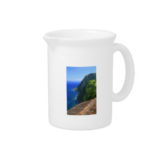 Coastal landscape in Azores Pitcher