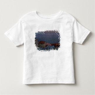 Coastal Landscape (oil on canvas) Toddler T-shirt