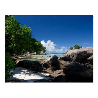 Coastal Naturescape Beach Vacation Postcard