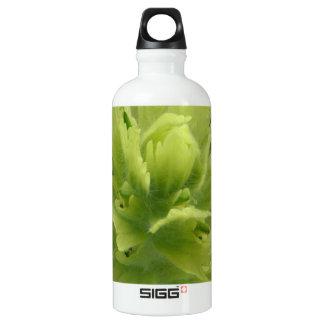 Coastal Paintbrush, Castilleja unalaschcensis SIGG Traveler 0.6L Water Bottle