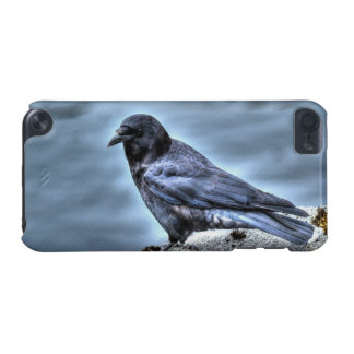 Coastal Raven Corvid-lovers Art Design iPod Touch 5G Cover