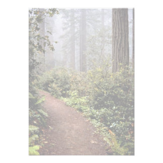 Coastal redwoods Lady Bird Johnson Grove Califor Custom Announcement