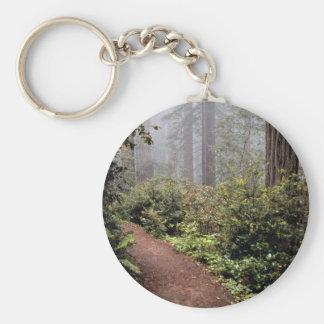 Coastal redwoods, Lady Bird Johnson Grove, Califor Keychains