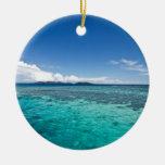 Coastal Reef, Fiji Ceramic Ornament