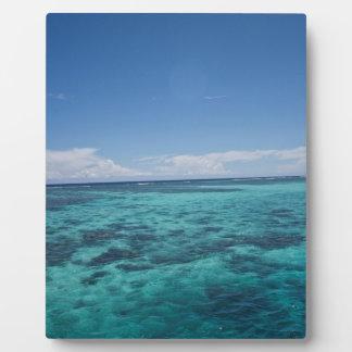 Coastal Reef, Fiji Display Plaques