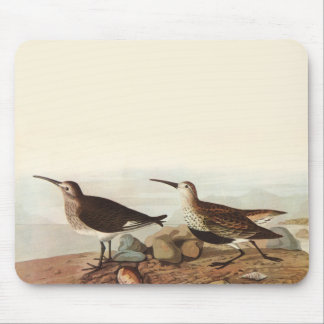 Coastal Sand Pipers Mouse Pad