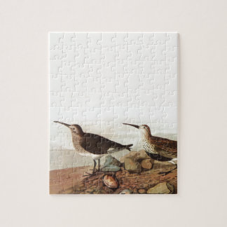 Coastal Sand Pipers Puzzle