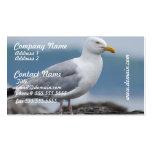 Coastal Seagull Business Cards