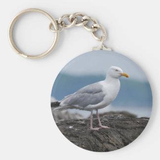 Coastal Seagull Keychain