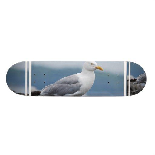 Coastal Seagull Skateboard