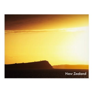 Coastal Sunrise, New Zealand Postcard