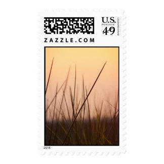 Coastal Sunset Stamp