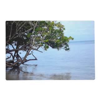 Coastal Tree Tropical View Laminated Placemat
