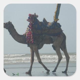 Coastal tribal Camel.JPG Square Sticker