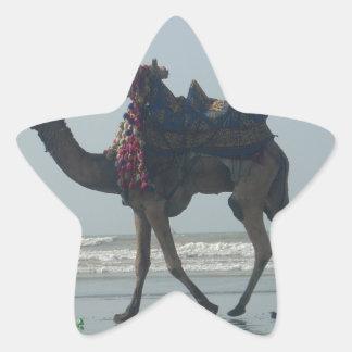 Coastal tribal Camel.JPG Star Sticker