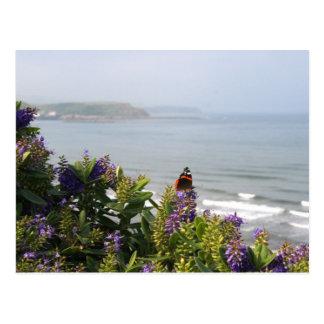 Coastal View Postcard